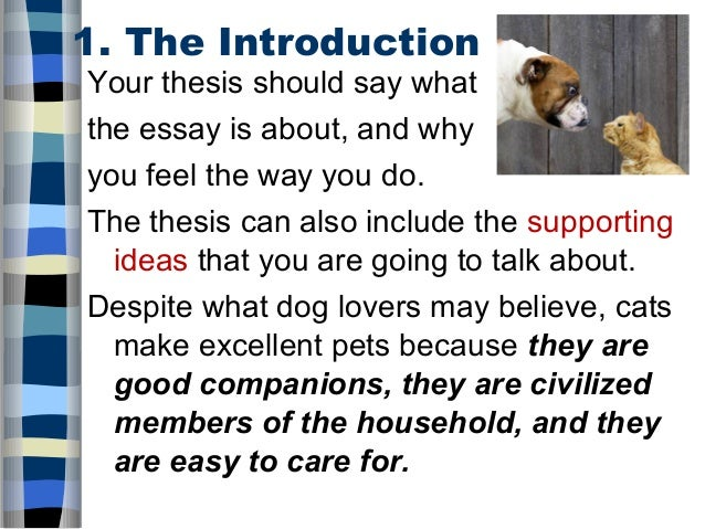 five paragraph essay cats and dogs Let us write you a custom essay sample on argumentative essay:dogs vs cats.
