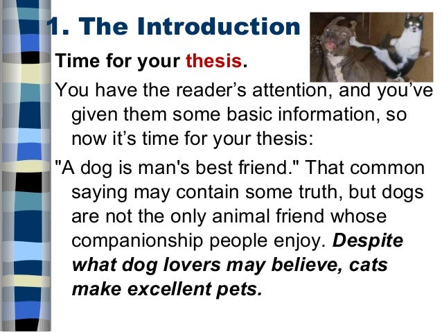 dog the man best friend essay Science finally explains the real reason dogs are man's best friend to test their theory, the researchers observed 30 dog owners salon ® is.