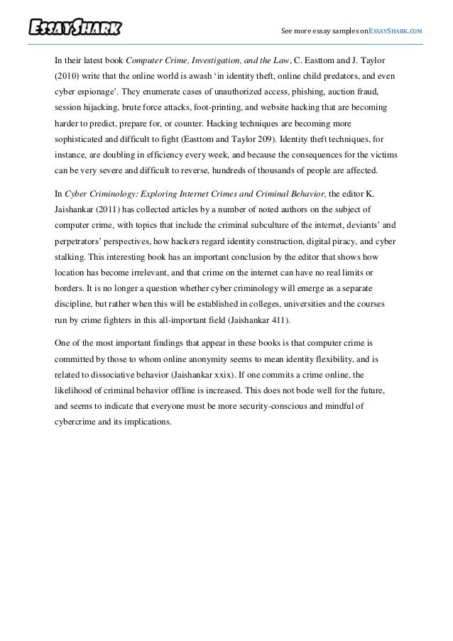 essay about identity theft