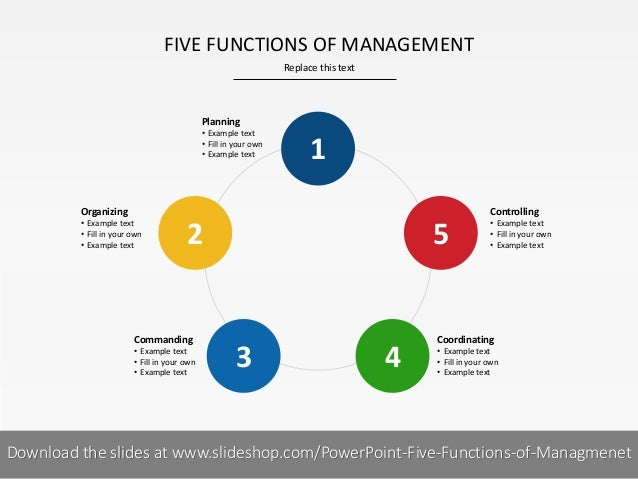 What Are the Four Basic Functions That Make Up the Management Process?
