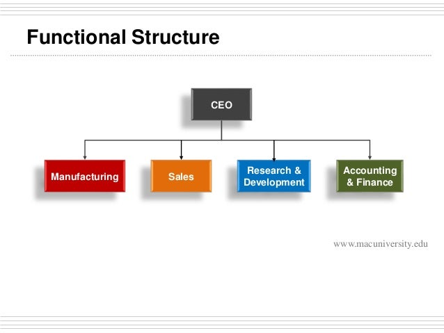 Types of Organizational Structure in Office Administration