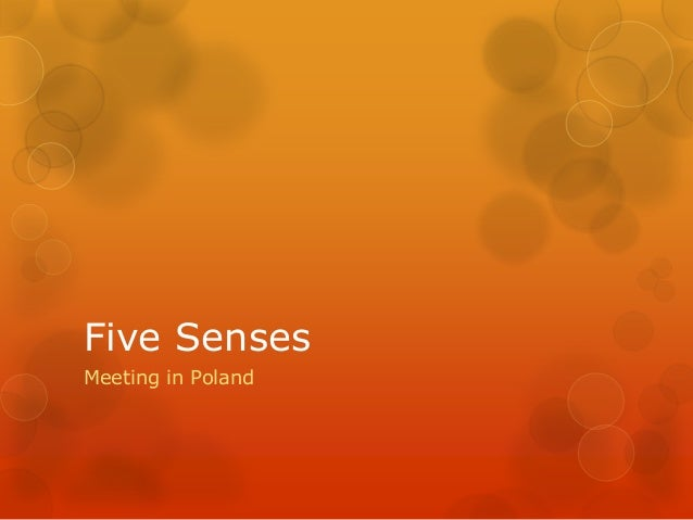 Five Senses Meeting in Poland