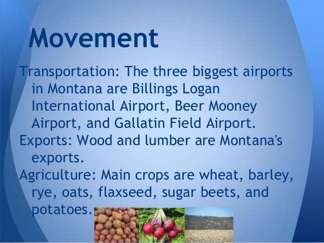 Five Themes Montana