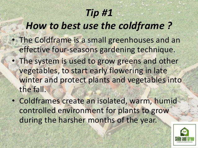 Five tips for successful coldframe gardening