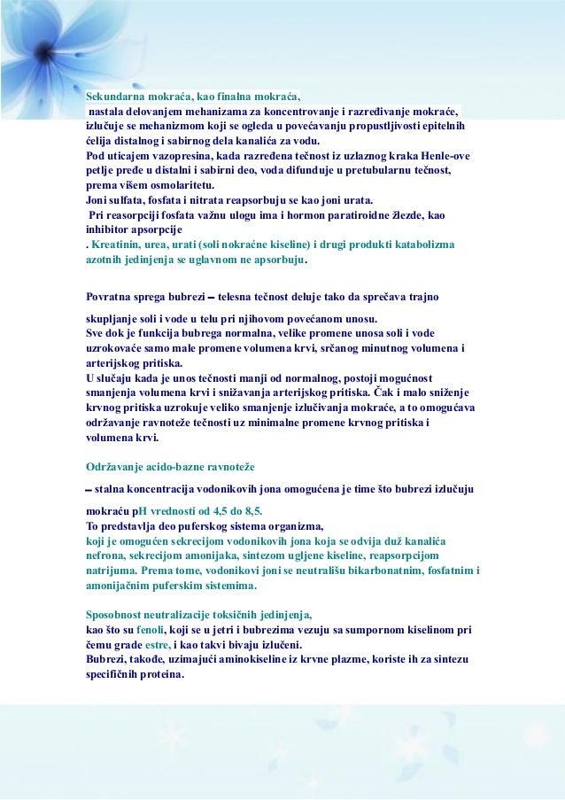 Sekundarna mokraća, kao finalna mokraća, nastala delovanjem mehanizama za koncentrovanje i razređivanje mokraće, izlučuje ...