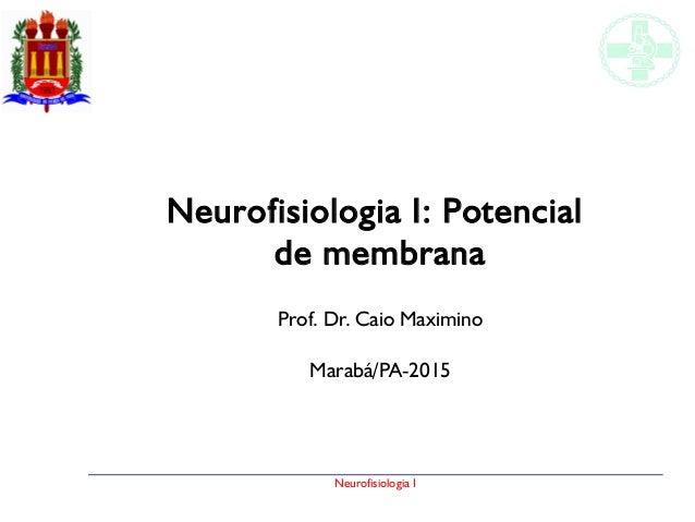 Neurofisiologia I Neurofisiologia I: Potencial de membrana Prof. Dr. Caio Maximino Marabá/PA-2015