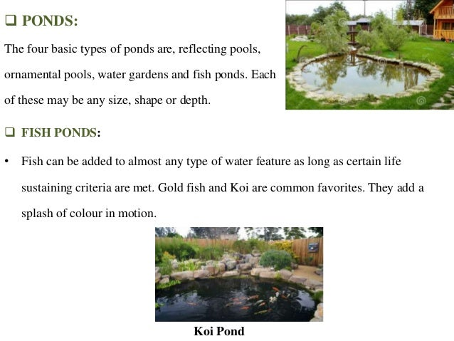 Water scaping for Ornamental pond fish types