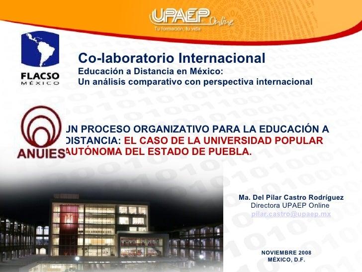 Ámbito organizacional UPAEP Online