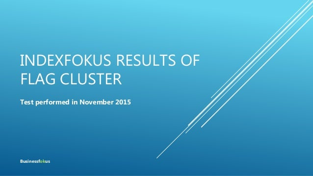 INDEXFOKUS RESULTS OF FLAG CLUSTER Test performed in November 2015 Businessfokus