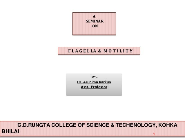 A SEMINAR ON F L A G E L LA & M O T I L I T Y G.D.RUNGTA COLLEGE OF SCIENCE & TECHENOLOGY, KOHKA BHILAI 1 BY:- Dr. Arunima...