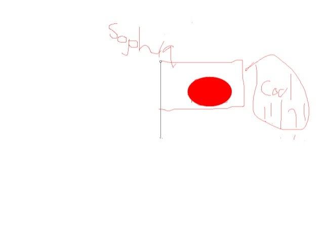 Flag sophia