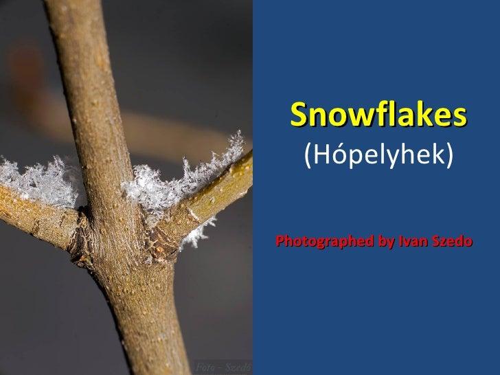 Snowflakes   (Hópelyhek)Photographed by Ivan Szedo