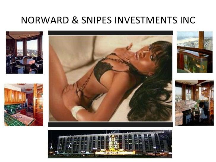 NORWARD & SNIPES INVESTMENTS INC