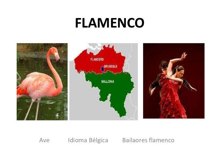 FLAMENCOAve   Idioma Bélgica   Bailaores flamenco