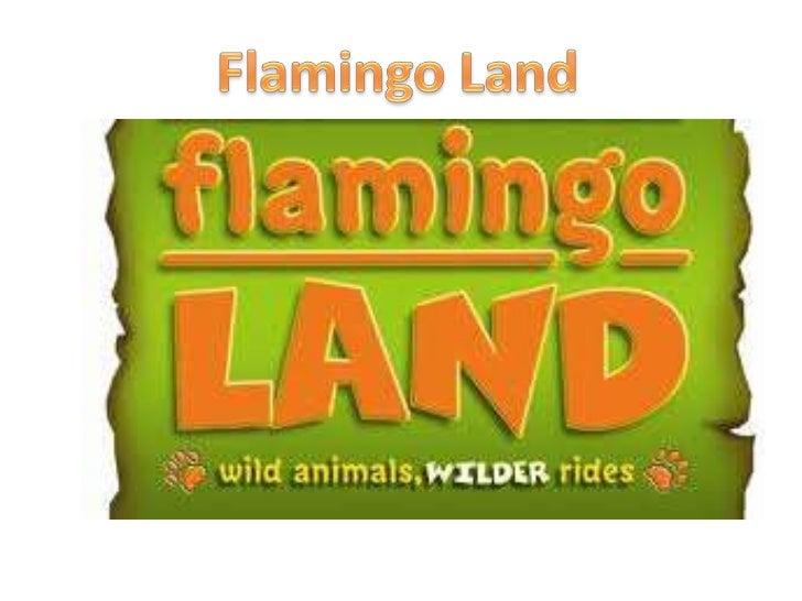 Flamingo land presention