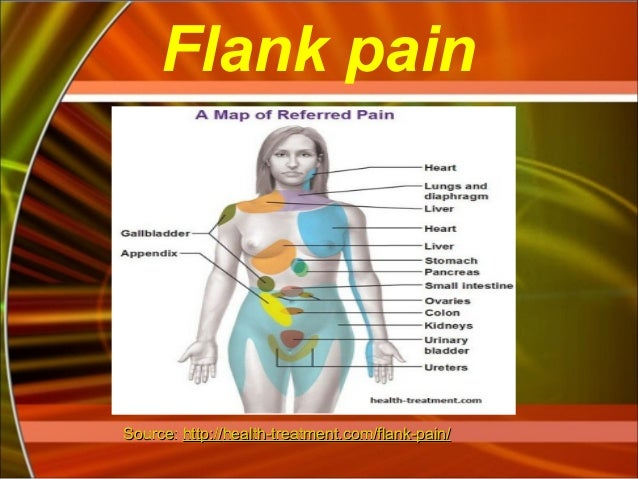 flank-pain-10-638?cb=1387317425, Skeleton