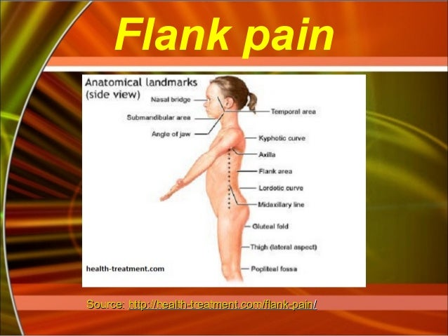flank-pain-13-638?cb=1387317425, Skeleton