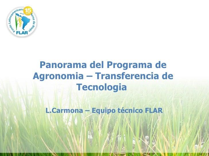 Panorama del Programa de Agronomia – Transferencia de Tecnologia  L.Carmona – Equipo técnico FLAR