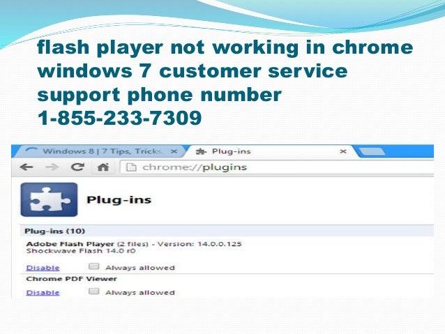 1-855-233-7309 Flash player not working in chrome windows customer s…