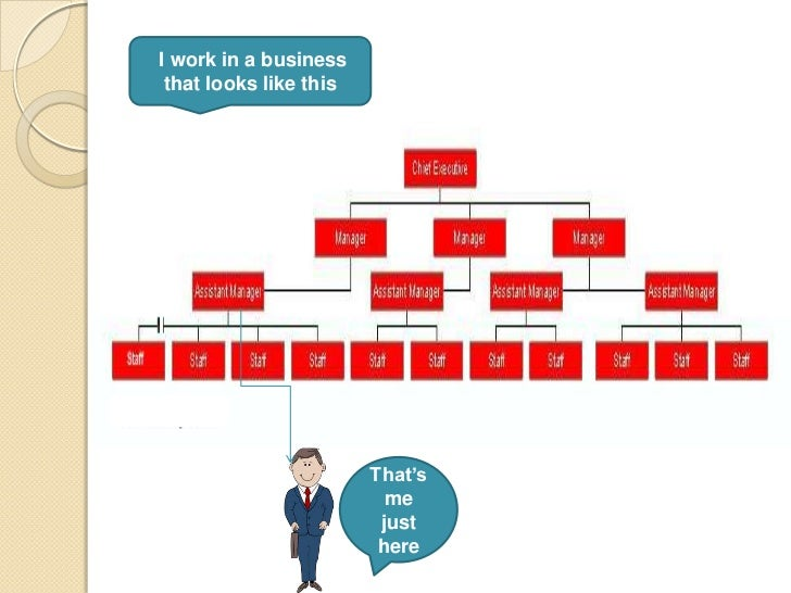 flat organizational structures business plan