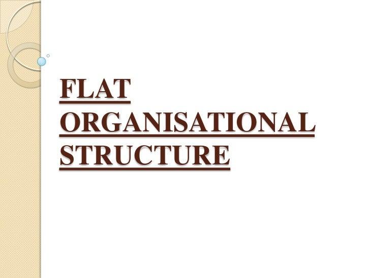 FLATORGANISATIONALSTRUCTURE