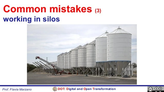 DOT: Digital and Open TransformationProf. Flavia Marzano Common mistakes (3) working in silos