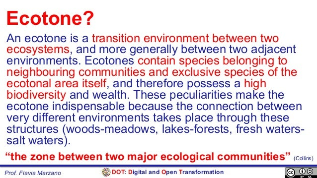 DOT: Digital and Open TransformationProf. Flavia Marzano Ecotone? An ecotone is a transition environment between two ecosy...