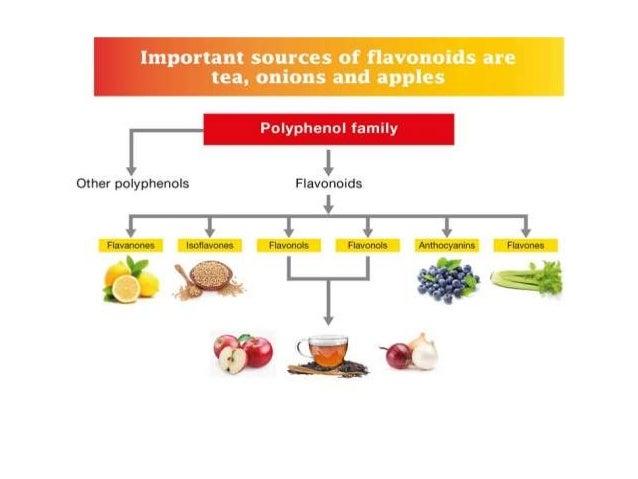 Flavonoids In Food List