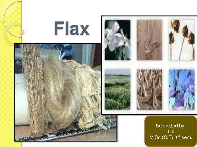 Flax Submitted by- Lili M.Sc (C.T) 3rd sem.