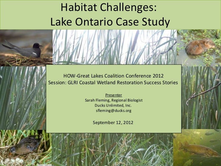 Habitat Challenges:Lake Ontario Case Study       HOW-Great Lakes Coalition Conference 2012Session: GLRI Coastal Wetland Re...