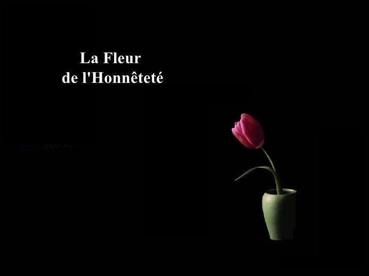 La Fleur  de l'Honnêteté