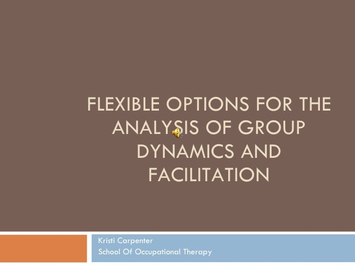 FLEXIBLE OPTIONS FOR THE ANALYSIS OF GROUP DYNAMICS AND FACILITATION Kristi Carpenter School Of Occupational Therapy