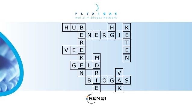 Flexigas Symposium 2013 - Groen gas, uit centraal of decentraal geproduceerd biogas? - Evert Jan Hengeveld Slide 3