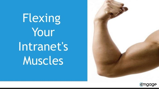 Flexing Your Intranet's Muscles