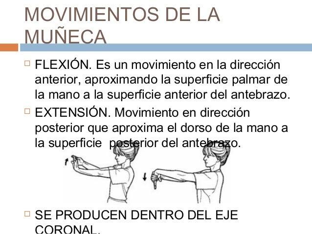 Flexion y extencion de muñeca