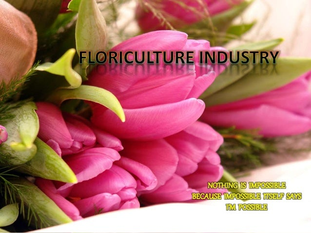 floriculture business plan