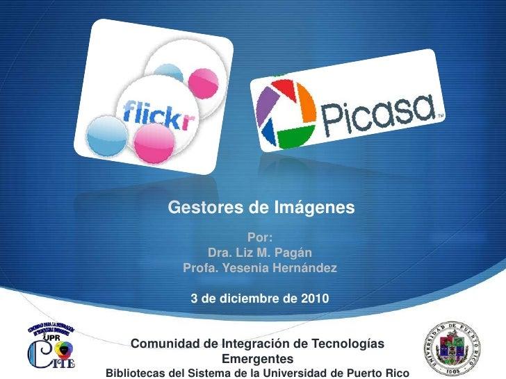 Gestores de Imágenes<br />Por: <br />Dra. Liz M. Pagán<br />Profa. Yesenia Hernández<br />3 de diciembre de 2010<br />Comu...