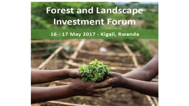 Session 6: Mitigating risks for private sector investments