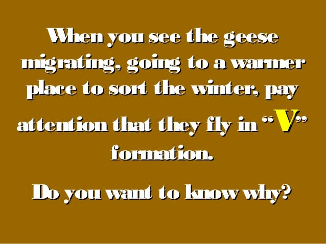When you see the geeseWhen you see the geesemigrating, going to a warmermigrating, going to a warmerplace to sort the wint...