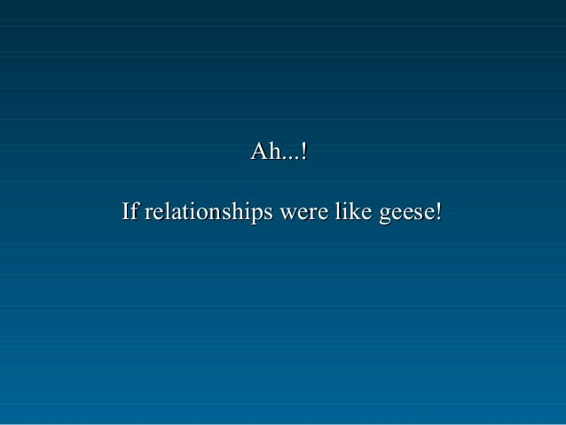 Ah...!Ah...! If relationships were like geese!If relationships were like geese!