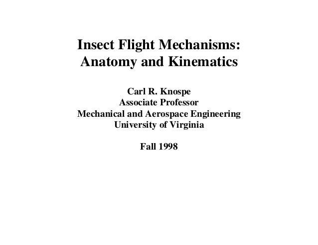 Insect Flight Mechanisms:Anatomy and Kinematics           Carl R. Knospe        Associate ProfessorMechanical and Aerospac...