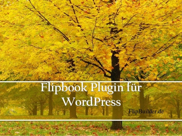 Flipbook Plugin für WordPress FlipBuilder.de