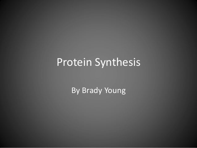 Protein Synthesis By Brady Young