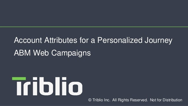 © Triblio Inc. All Rights Reserved. Not for Distribution Account Attributes for a Personalized Journey ABM Web Campaigns