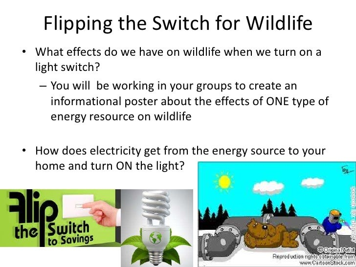 Flipping the Switch for Wildlife<br />What effects do we have on wildlife when we turn on a light switch?<br />You will  b...