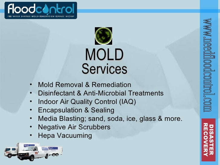 Flood Control Introduction - Mold removal invoice
