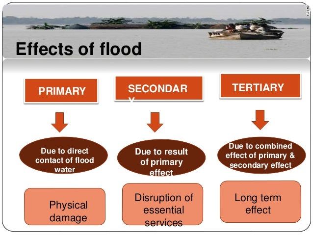 Flood Ppt