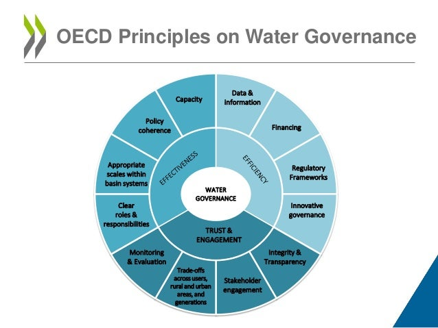 shared governance paper Increased engagement of registered nurses through different professional practice models such as shared governance has been proposed as a necessity to improve quality.