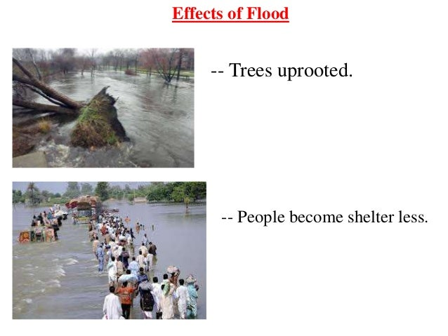 effects of floods on people