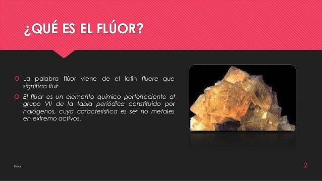 Bioqumica del flor flor bioqumica jhoselin vazquez cruz odontologa segundo semestre 2 urtaz Gallery